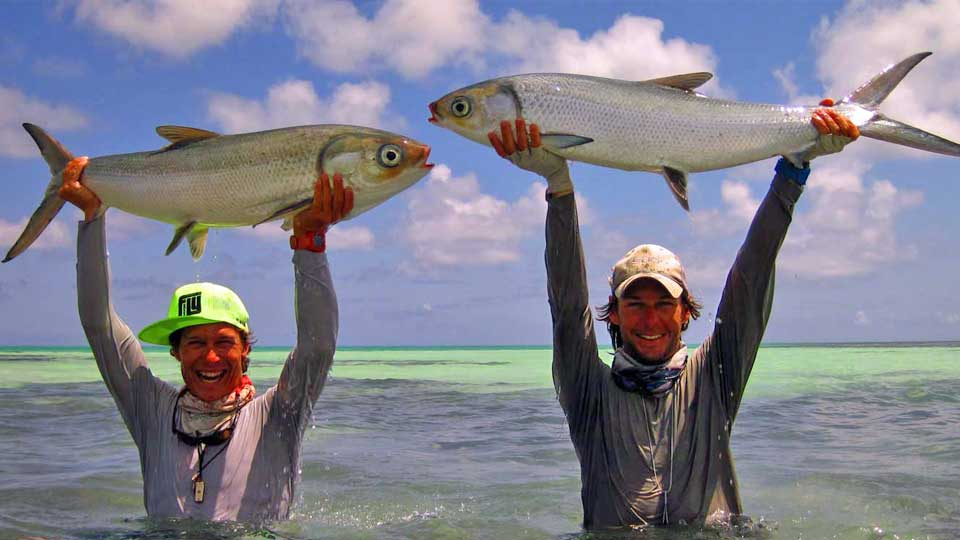 Seychelles Fishing Lodges