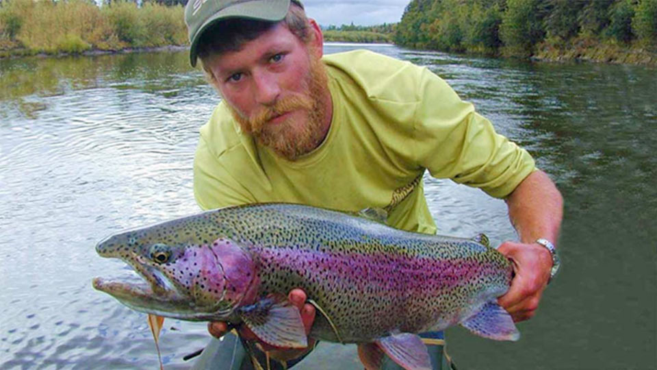 Large Rainbow Trout