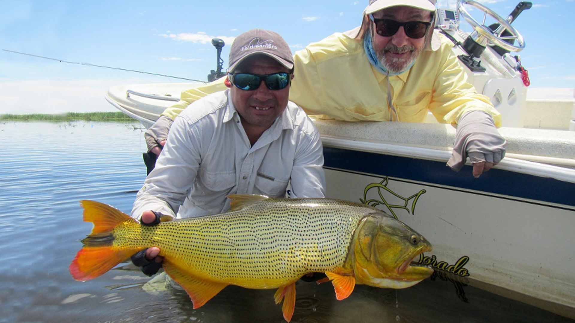 golden dorado river cruiser argentina fishing