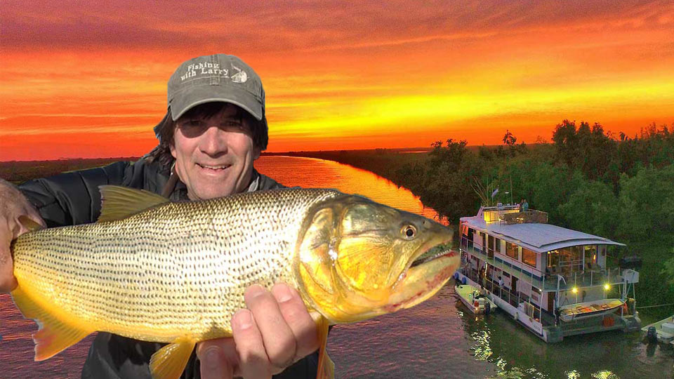 Golden Dorado River Cruiser Hosted Fishing