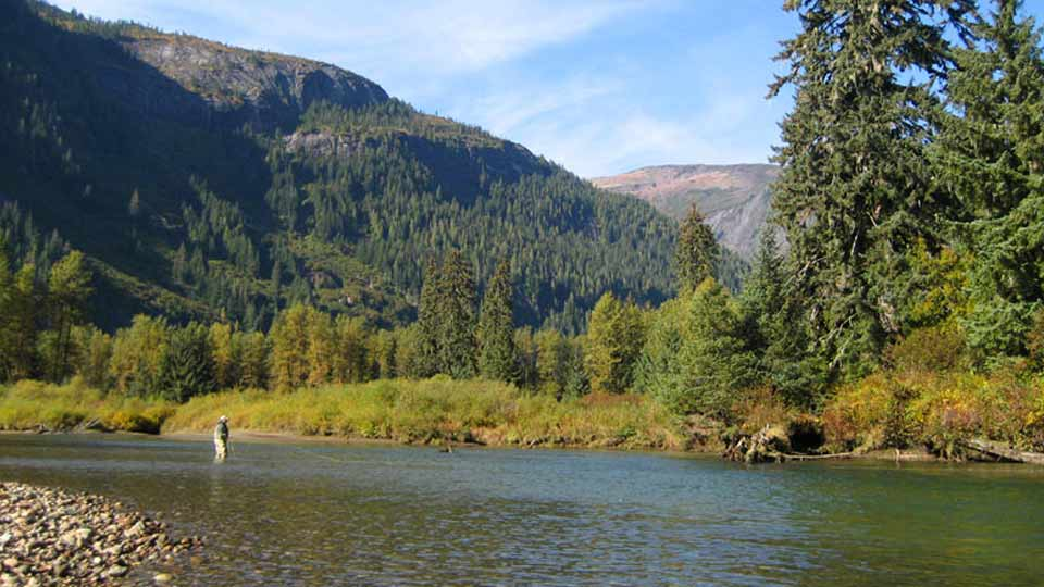 British Columbia steelhead fishing