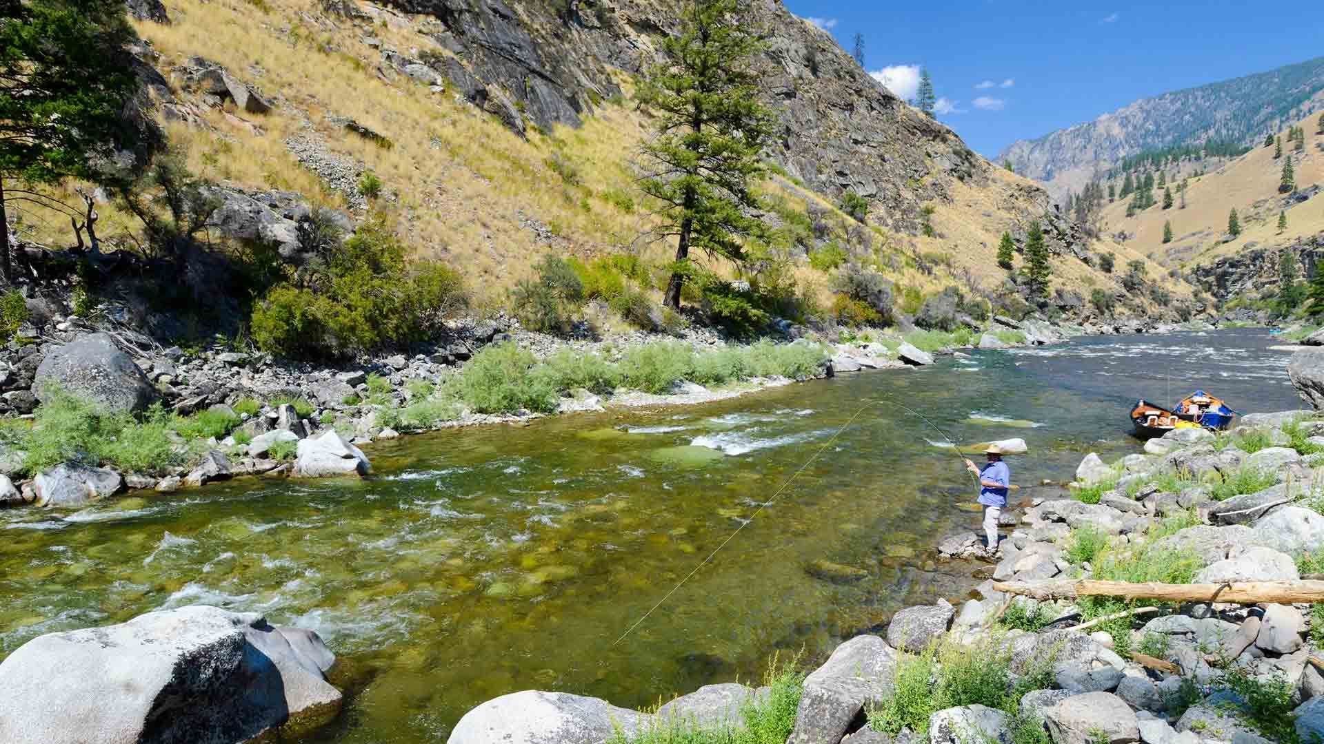 Angler Fly Fishing Big Creek Area
