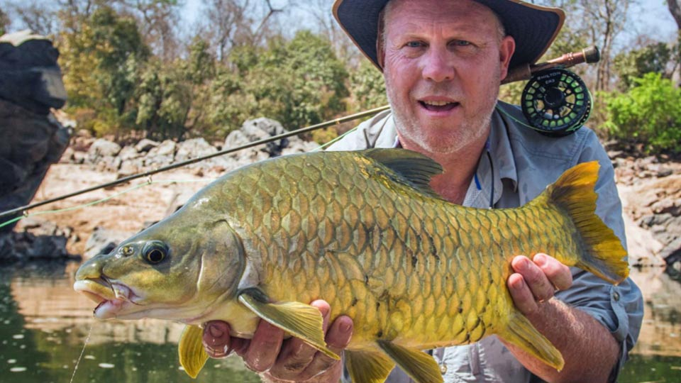 Fly fishing for yellowfish