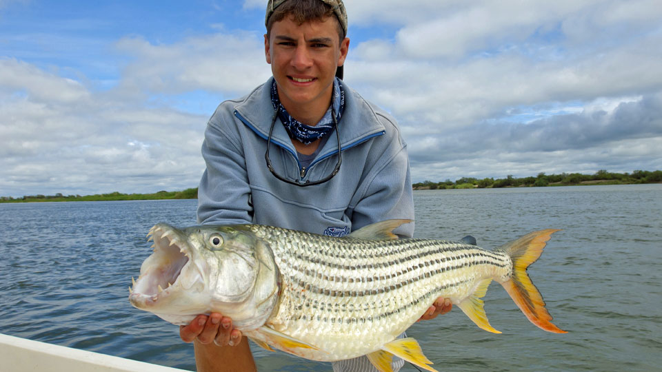 Trophy tiger fishing africa