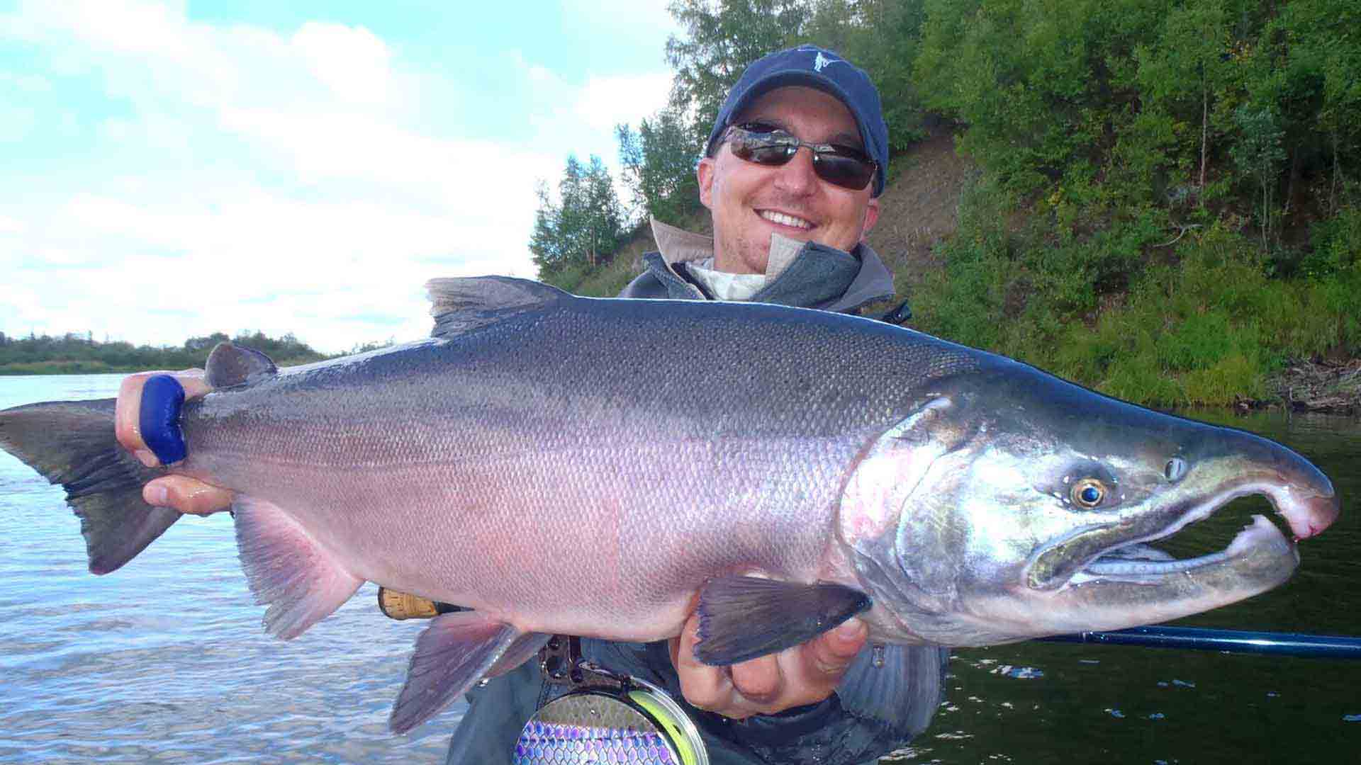 Alaska Trophy Adventures fishing seasons