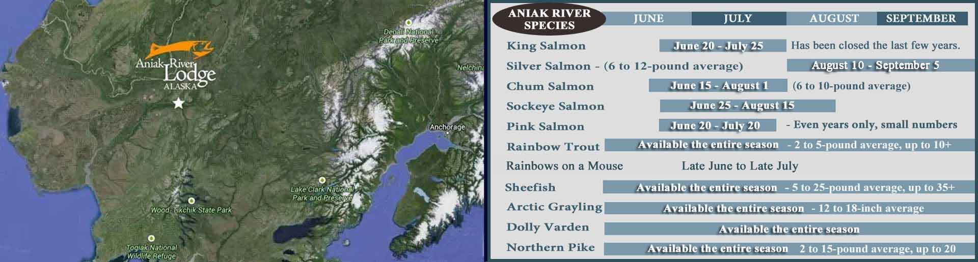 Aniak River Seasons and Species