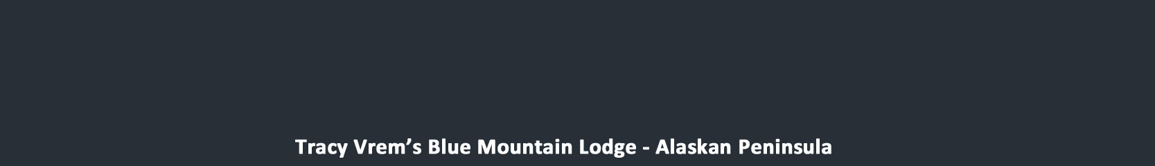 Blue Mt. Lodge
