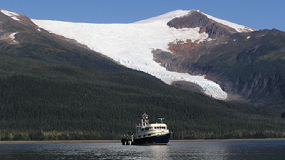 Wild Alaska Fishing Cruise