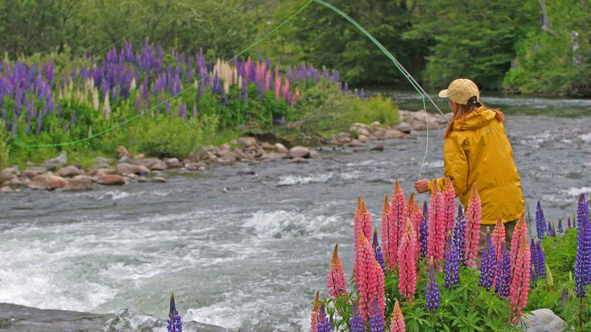 patagonian fly fishing and lupine