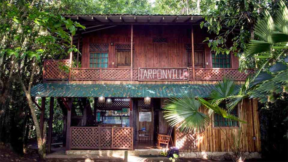 Tarponville Lodge