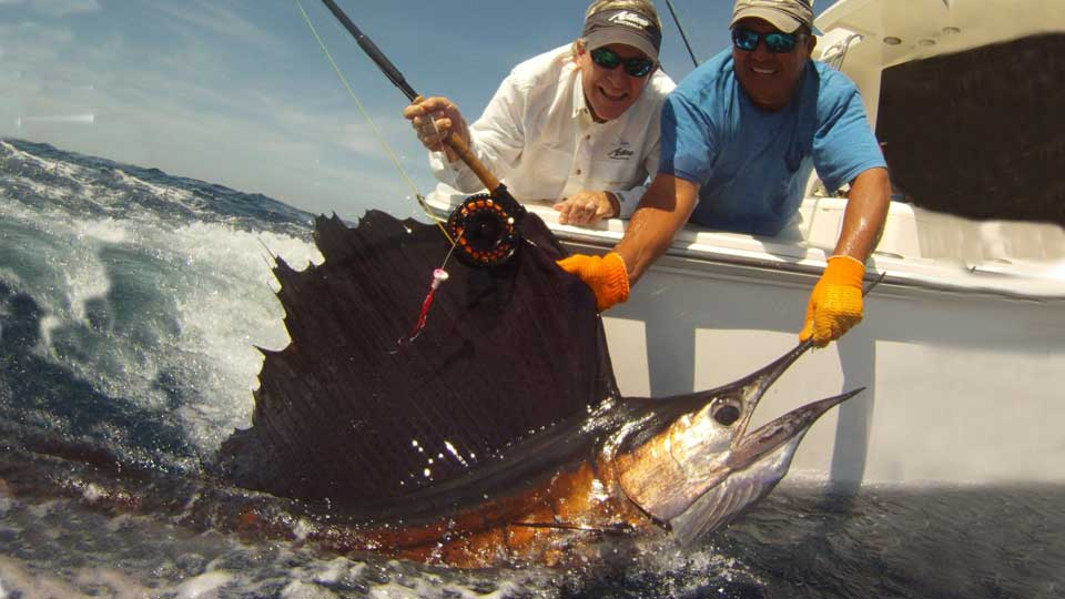 Guatemala sailfishing