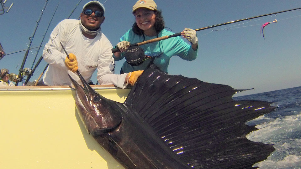 Sailfish Oasis Bill Fishing