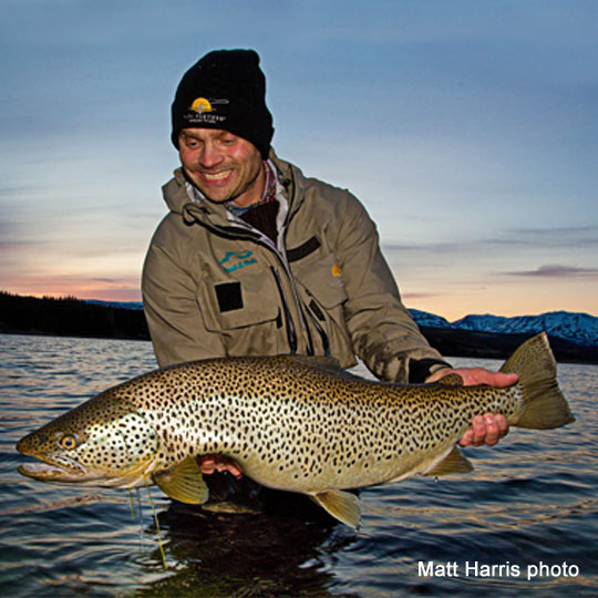 Brown Trout Fly Fishing - Iceland