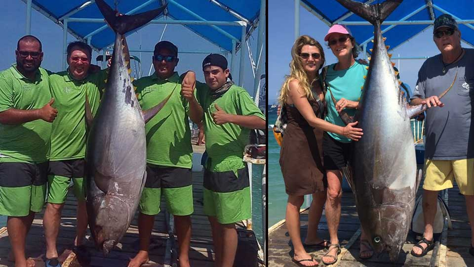 Baja tuna fishing